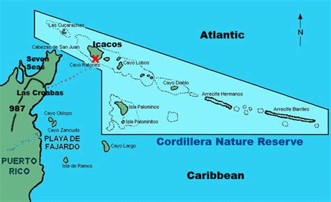 catamaran to palomino island part two research on the road and sea research matters