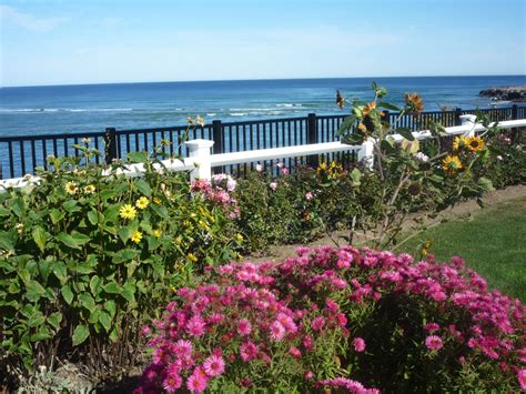 10 reasons to love marginal way in ogunquit maine the