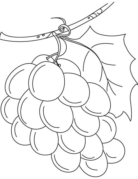 coloring page water into wine water into wine coloring pages az coloring pages