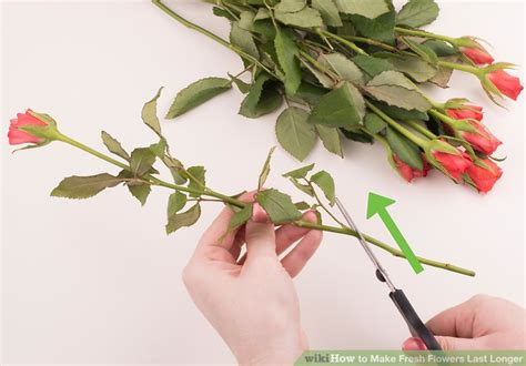 how long do flowers last how do you make long stem roses last longer best flowers