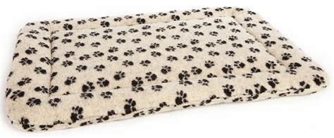 cuscino cani cuscino per cani quale scegliere