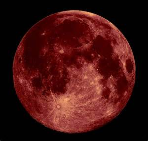 straberry moon strawberry moon cro cumaisc etir blog it or lose it