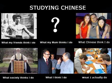 Chinese People Meme - studying chinese internet memes pinterest studying