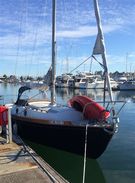 craigslist seattle boat moorage dolphin24 org a website for dolphin owners and others
