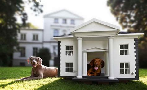 20 most luxurious dog houses 20 awesome outdoor dog houses home design and interior