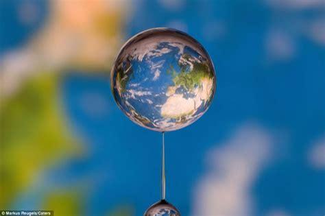 imagenes sorprendentemente bellas im 225 genes sorprendentes captadas en una sola gota de agua