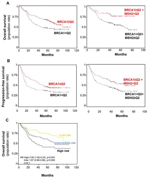alone level 3 lower intermediate 8483234076 oncotarget msh2 brca1 expression as a dna repair signature predicting survival in early stage