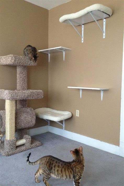 cat decor for the home homemade cat playground pets pinterest cats