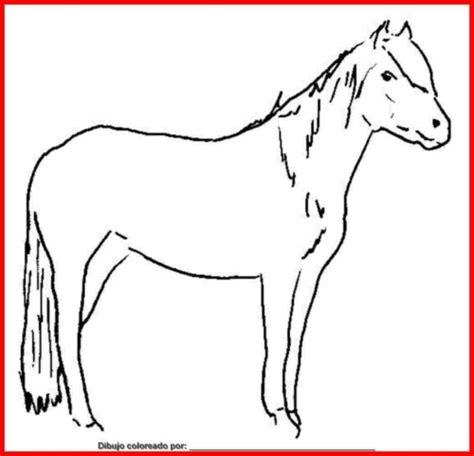 imagenes animales mamiferos para imprimir dibujos de animales para colorear dibujos de animales