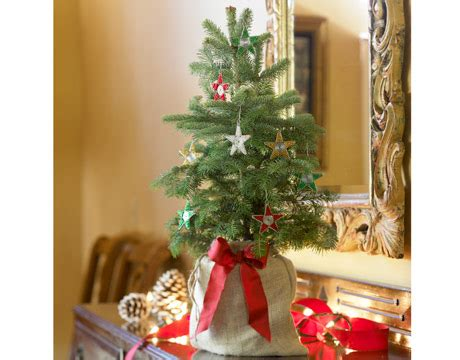 holiday decorating ideas for your barnwood table