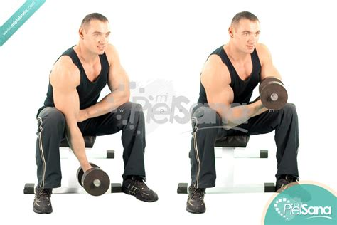 Standing Concentration Curl by Search Results For Exercises With Dumbbell Calendar 2015