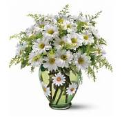 Daisy Flower Bouquet Arrangements Images  Beautiful Black And White