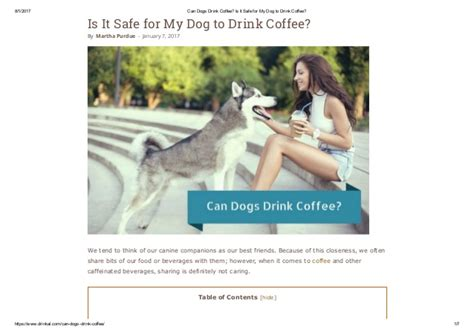 can dogs coffee can dogs drink coffee