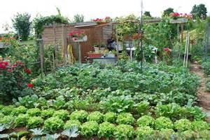 g 233 rer au mieux l eau au jardin 1 pr 233 venir les d 233 g 226 ts de