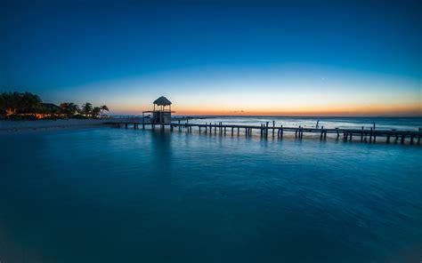 nature beach sunset walkway tropical sea palm trees