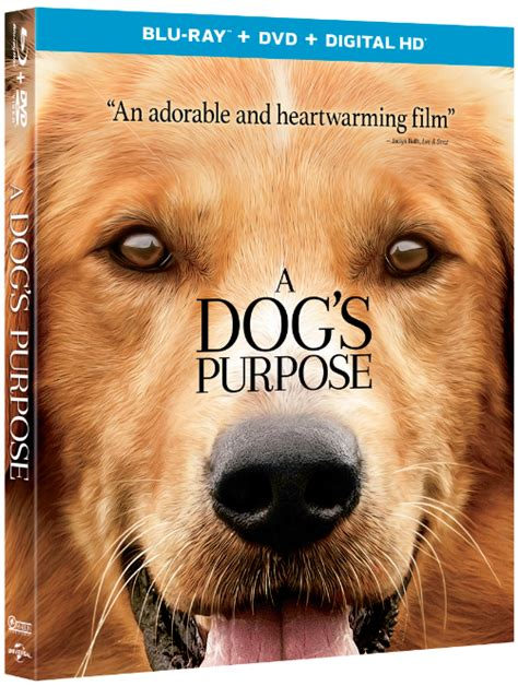 a s purpose dvd 10 a s purpose dvd digital hd combo packs giveaway