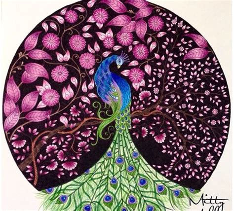 secret garden coloring book peacock gardens peacocks and johanna basford secret garden on