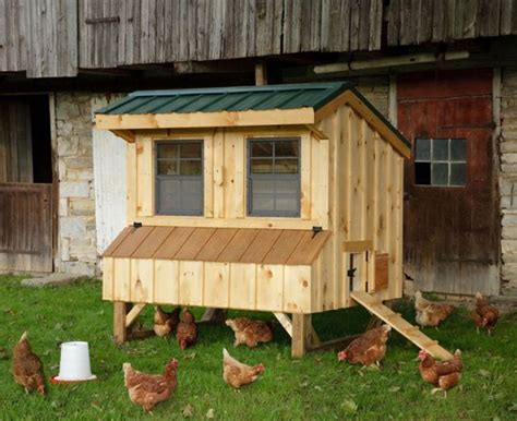 Handcrafted Chicken Coops - pinecraft amish stores announces launch of