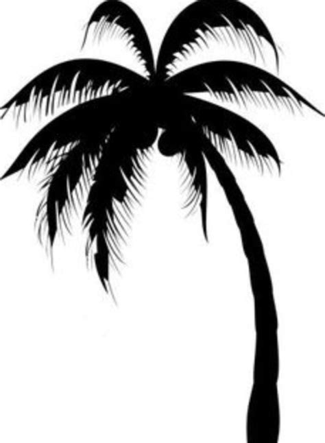 palm tree drawing free download best palm tree drawing
