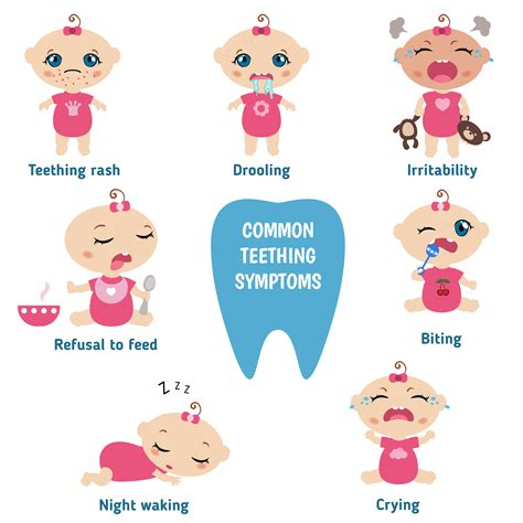 baby teething baby teething symptoms