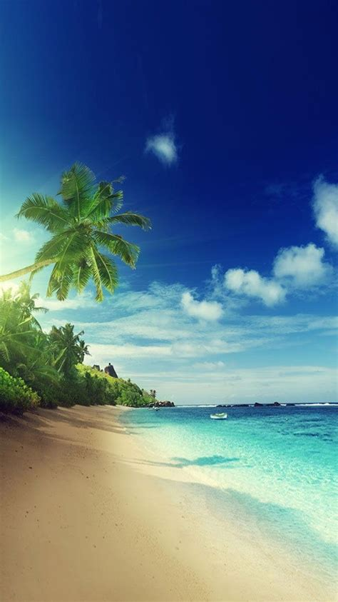 google images beach beach live wallpaper android apps on google play