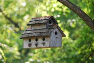 diy project how to make your own birdhouse modernlifeblogs