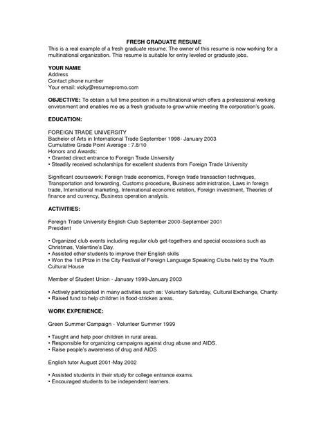 Professional CV Examples for Fresh Graduates