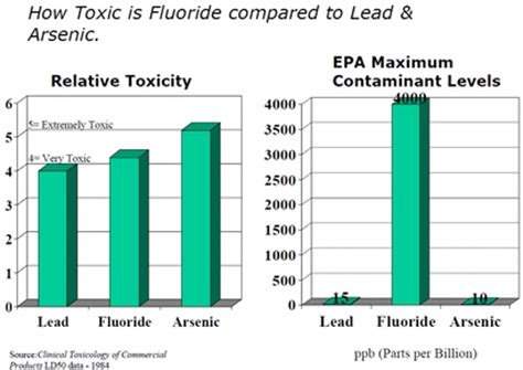 How To Detox From Fluoride by Lead