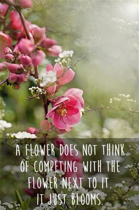 Flower Quotes Flower Quotes And Sayings Quotesgram