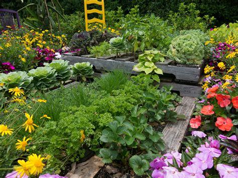 Pallet Garden Ornamental Vegetable Gardens Pinterest Pallet Vegetable Garden