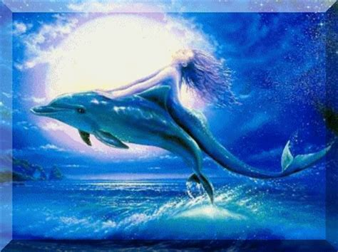 Selimut Mermaid Murah Gratis Nam dolphin dolphins fan 9919709 fanpop