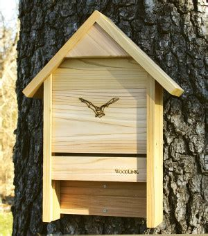 where to put a bat house in your yard bats in the house house plan 2017