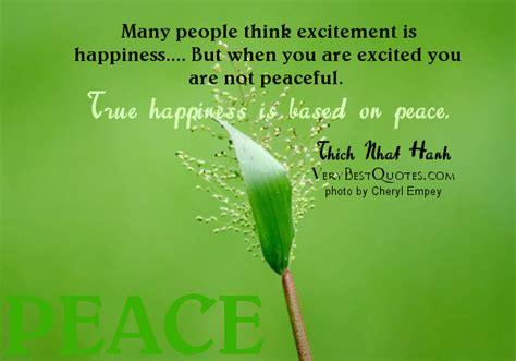 happiness in this a meditation on earthly existence books excitement quotes quotesgram