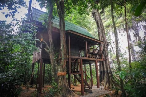 famous tree houses amazing tree house in jungle best house design