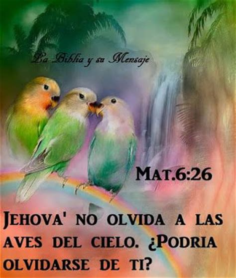 Imagenes Con Frases Bonitas De Testigos De Jehova | somos testigos de jehov 225 community google jw org