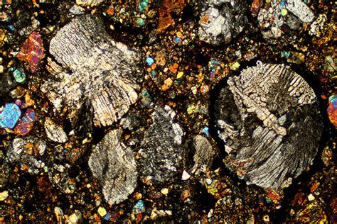 petrographic thin sections petrographic thin sections for sale