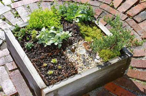 how to make a mini garden backyard projects birds and