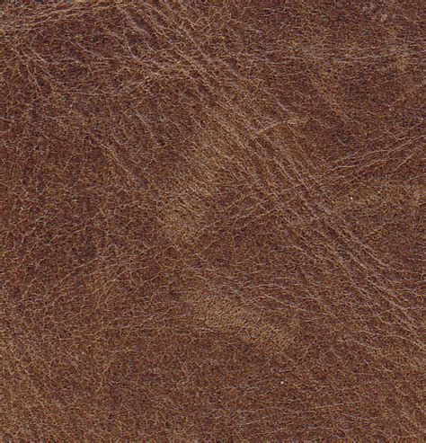 what is aniline leather ltt