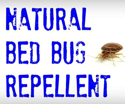 how to repel bed bugs from biting you diy pest control how to get rid of pests yourself