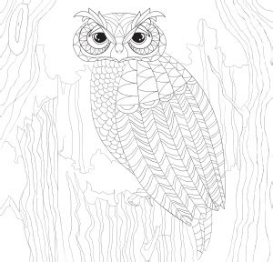 intricate owl coloring pages peter pauper press intricate owl town coloring book adult