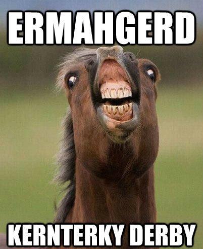 funny horse memes