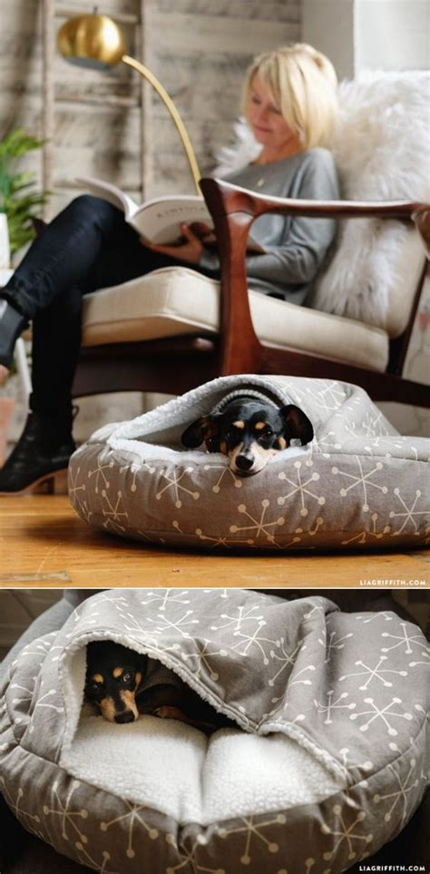 dog burrow bed best 25 animal projects ideas on pinterest animal art