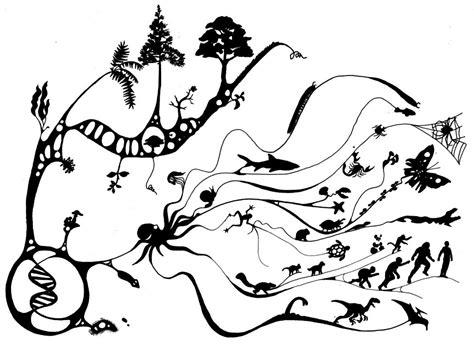 evolution tattoos the tree of darwin evolution science biology