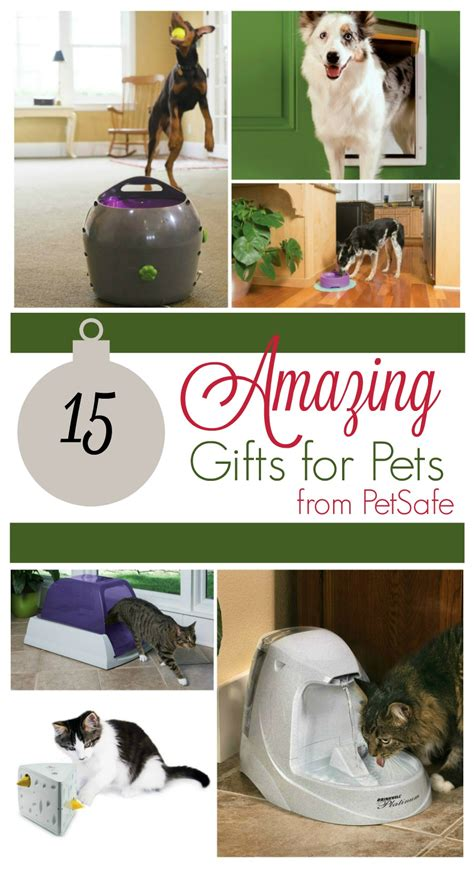 15 amazing gifts for pets from petsafe