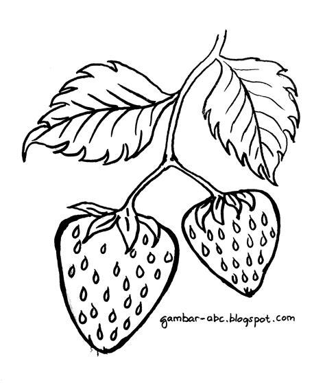 gambar mewarnai buah strawberry belajar mewarnai