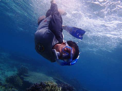 dive skins open water scuba diving certification tahapan dalam