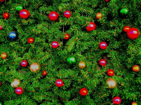 christmas bulbs free stock photo public domain pictures