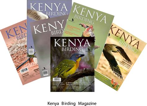 50 top birding in kenya books kenya birding magazine back copies nature kenya
