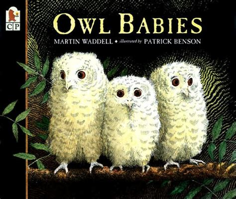 libro owl babies owl babies by martin waddell patrick benson paperback barnes noble 174