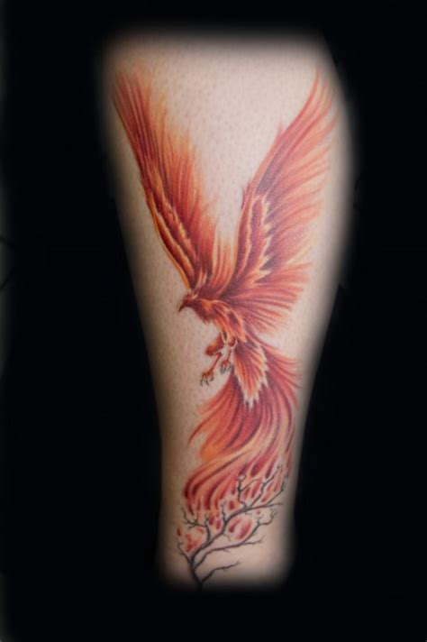 phoenix tattoo inner arm tattoo zentrum phoenix tattoos von tattoo bewertung de